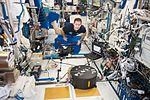 ISS-51 Thomas Pesquet with Fluidics in the Columbus module.jpg