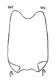 Illustration from Foucauld's Dictionnaire touareg, page 304 (b).png