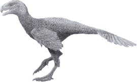 Incisivosaurus (pencil 2013).png