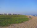 India - Chennai - Valmiki Nagar beach looking north (2278424111).jpg