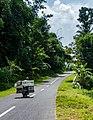 Indonesia - Yogyakarta (26449377780).jpg