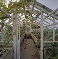 Interieur, overzicht plantenkas - Delft - 20404908 - RCE.jpg