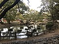 Iris Pond of Kashii Shrine 6.jpg