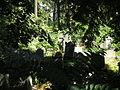 Israelitischer Friedhof Währing Sept 2006 002.jpg