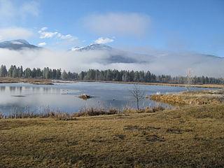 January Ice Fog (8662560141).jpg
