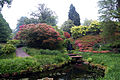 Japanese Garden @ Wakehurst Place (5151375028).jpg