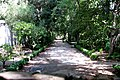 Jardin Botanico (48) (9376506525).jpg