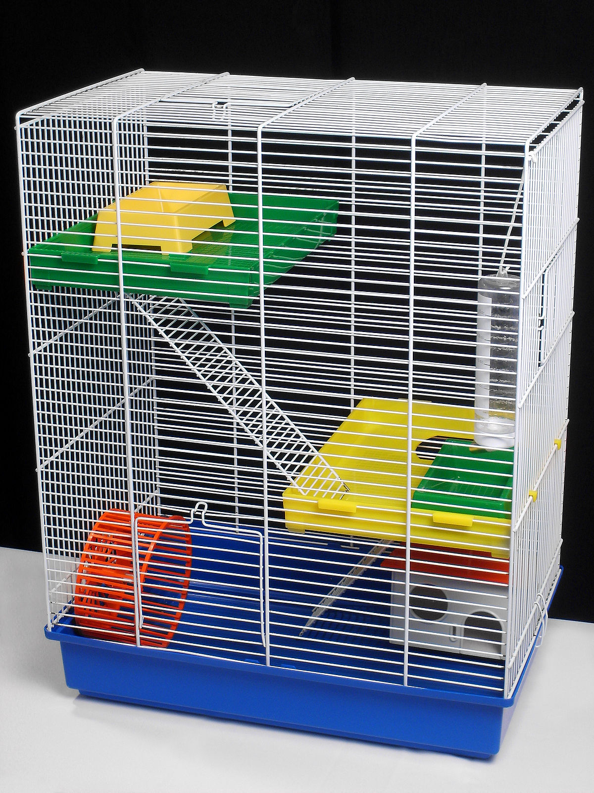 Hamster cage wikipedia for How to build a hamster cage
