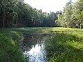 Jezirka u Rozvadova (CZE) - Nature Reserve.jpg