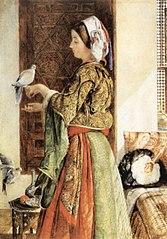Captive Dove, Kaïro