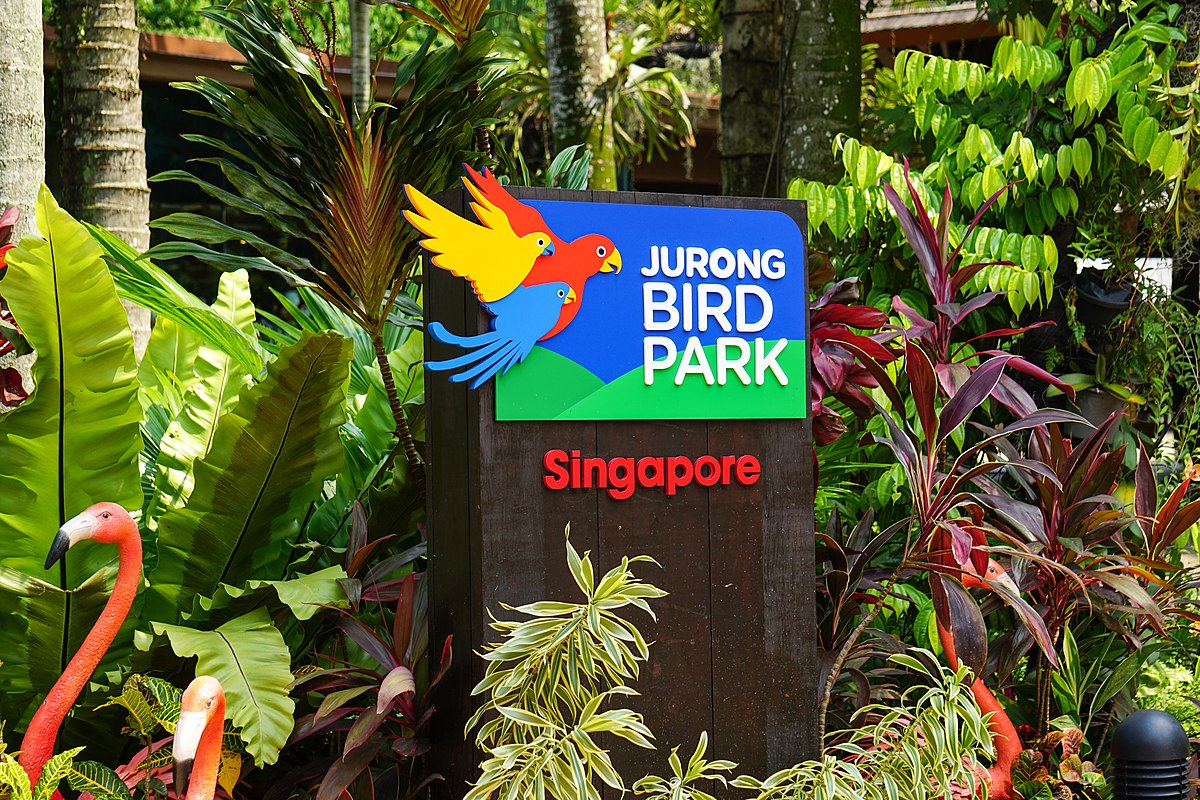 Jurong Bird Park Singapore - YouTube