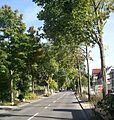 Köln Allee Bergisch-Gladbacher Str..jpg