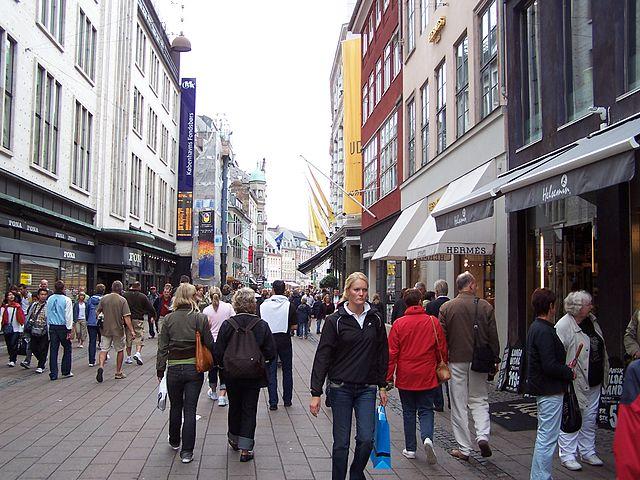 Преступники- иностранцы, по-прежнему, являются одной из самых главных проблем полиции Дании