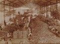 KITLV - 152199 - Kurkdjian - Cutting and loading of carts with sugarcane on a plantation in Java - circa 1910.tif