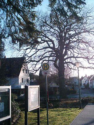 Ehlscheid - Image: Kaisereiche Ehlscheid