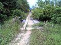 Kepala Gurung, Mentebah, Kapuas Hulu Regency, West Kalimantan, Indonesia - panoramio (2).jpg
