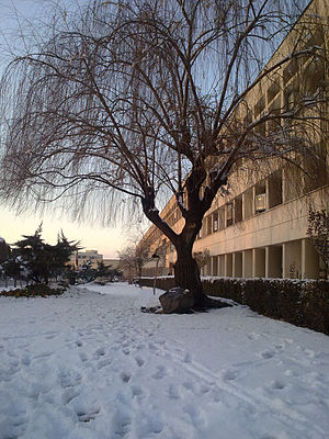 Kharazmi University Winter.jpeg