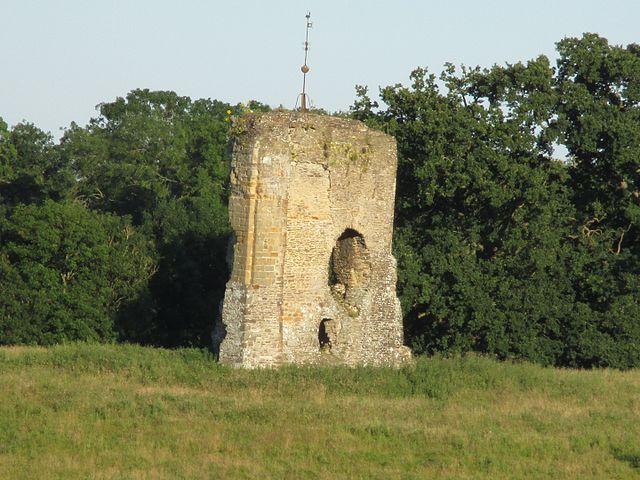 Knepp Castle