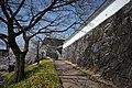 Kofu Castle 201904l.jpg