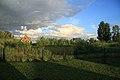 Kolyvansky District, Novosibirsk Oblast, Russia - panoramio - Alexey Bukhtiyarov.jpg
