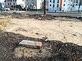 Kosynierów Park in Poznań 2020 old evangelical cemetery 08.jpg