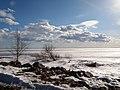 Kurortny District, St Petersburg, Russia - panoramio (5).jpg