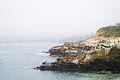 La Jolla Cove-1.jpg