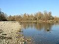 La rivière d'Ain à Villieu-Loyes-Mollon (Ain, France).jpg