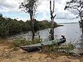 Lago do mamiá, Coari-Amazonas.jpg