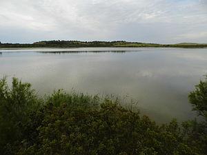 Laguna de Medina (2).JPG