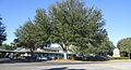 Lake City FL Jan2014 Mediplex.JPG