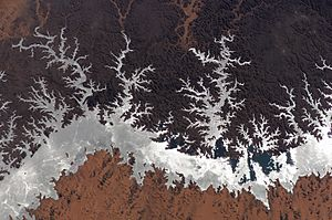 Environmental impact of reservoirs - Image: Lake Nasser
