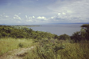 Lake Rukwa.JPG
