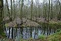 Landschap De Stroopers te Kemzeke - 371763 - onroerenderfgoed.jpg