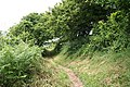 Lanteglos, footpath from Pont Quay 2 - geograph.org.uk - 1361668.jpg
