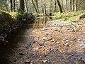 Latchmore Brook, Alderhill Inclosure - geograph.org.uk - 414725.jpg