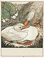 Le-vilain-petit-canard-7-525b24fc.jpg