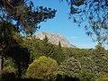 Le Tholonet-FR-13-vue du Mont Venturi-01.jpg