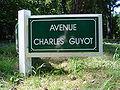Le Touquet-Paris-Plage (Avenue Charles Guyot).JPG