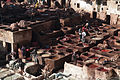 Leather tanning in Fes (5365019220).jpg