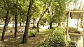 Leninskiy rayon, Stavropol', Stavropolskiy kray, Russia - panoramio (19).jpg