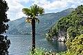 Lenno - Villa del Balbianello 0591.JPG