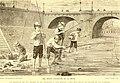 Les poissons des eaux douces de la France; anatomie-physiologie-description des espèces-moeurs-instincts-industrie-commerce-resources alimentaires-pisciculture-législation concernant la pêche (1880) (14764120585).jpg