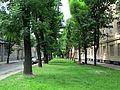 Levytskoho Street, Lviv (1).jpg
