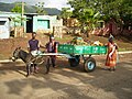 Light-weight donkey cart for solid waste transportation (6626713115).jpg