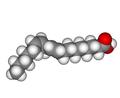 Linoleic acid3D.png