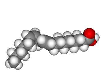Polyunsaturated fat - 3D representation of linoleic acid in a bent conformation.