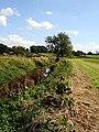 Little Avon River - geograph.org.uk - 249120.jpg
