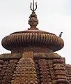 Little Cormorant, Mukteshwar Temple (19807724508).jpg