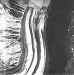 Lituya Glacier, tidewater glacier terminus with wide moraines, August 12, 1980 (GLACIERS 5613).jpg
